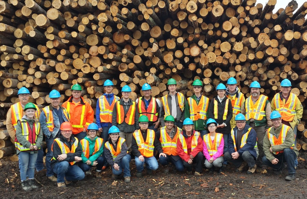 Some members of our team at a client sawmill.